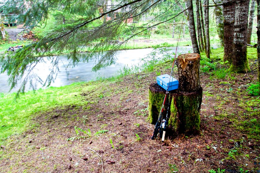 Starry Nights Cabin fishing by the creek
